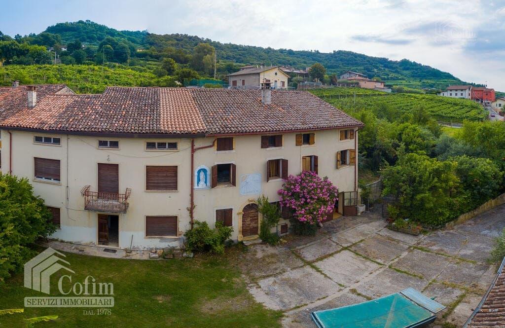 Rustico in panoramica ampia CORTE STORICA in VENDITA  Dal Cero (Montecchia di Crosara) - 2
