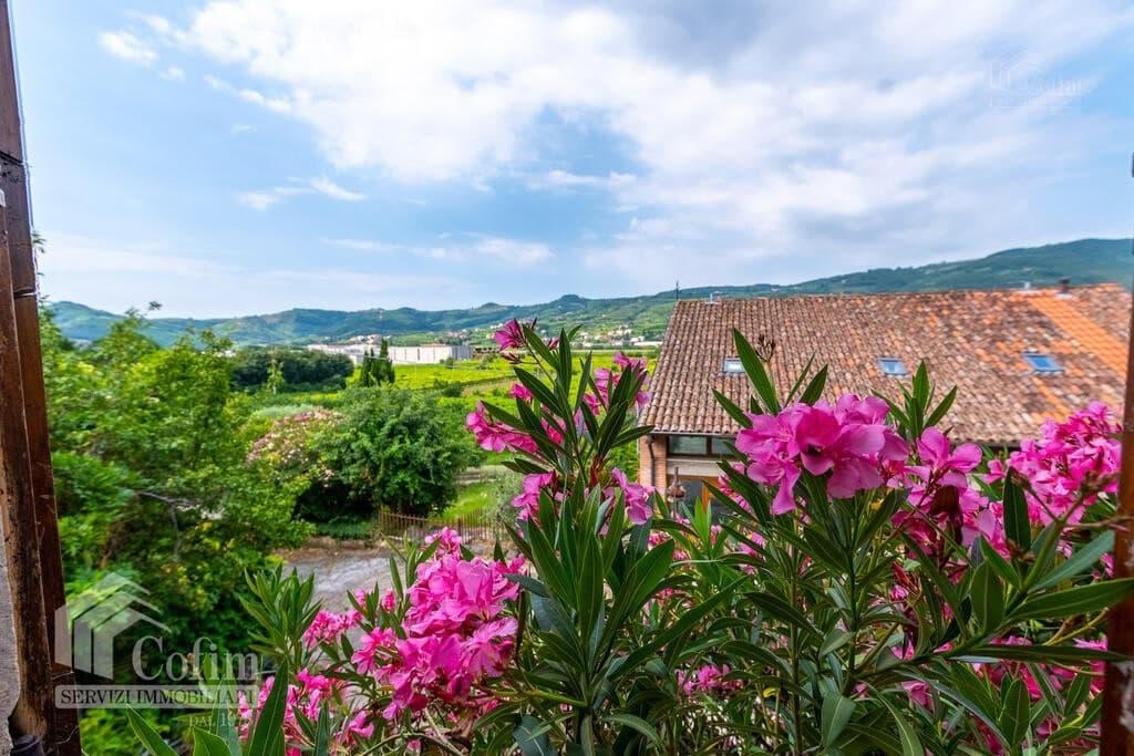 Rustico in panoramica ampia CORTE STORICA in VENDITA  Dal Cero (Montecchia di Crosara) - 31