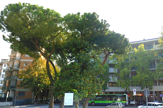 Appartamento trilocale in AFFITTO piano alto panoramico Vicinanze Ospedale  Verona (Borgo Trento)