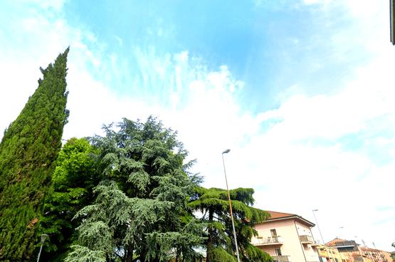 Appartamento cinque locali Verona LS1514